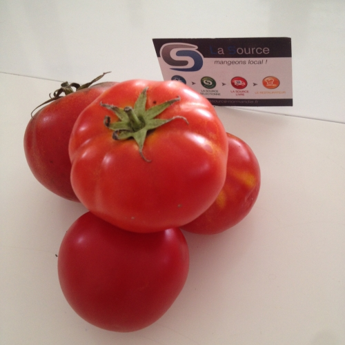 tomate maestra