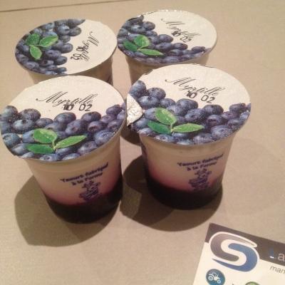 yaourt4myrtille956