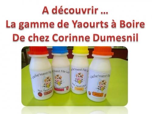 yaourt à boire